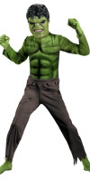 Incredible Hulk Costume Basic