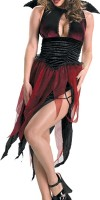 Teen Vampiress Costume