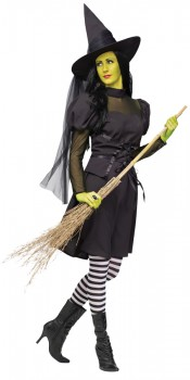 Teen Wicked Witch Costume