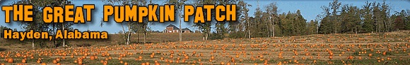 greatpumpkinpatch