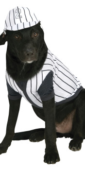 Baseball Dog Costume