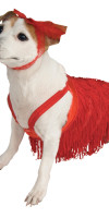 Red Flapper Dog Costume