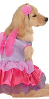 Pixie Dog Costume