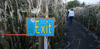 Image of the exit at a corn maze.