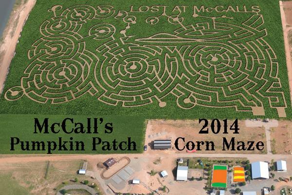 mccallspumpkinpatch