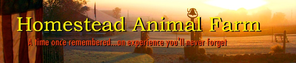 homesteadanimalfarm