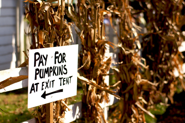 Image of exit sign from pumpkin patch in New Jersey.