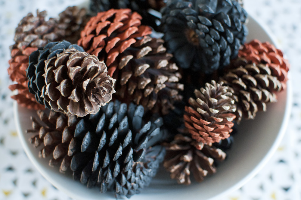 Dip-dyed Pine Cones